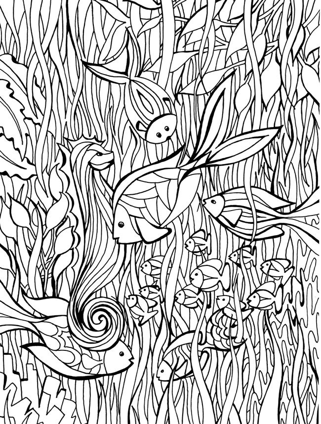 welcome to dover publications fish coloring page