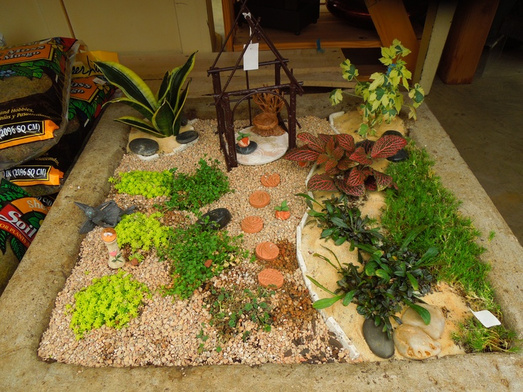 the beginning stages in a fairy garden the moss has yet to crawl over and cover most of the area on the left you can use very small rock and sand on