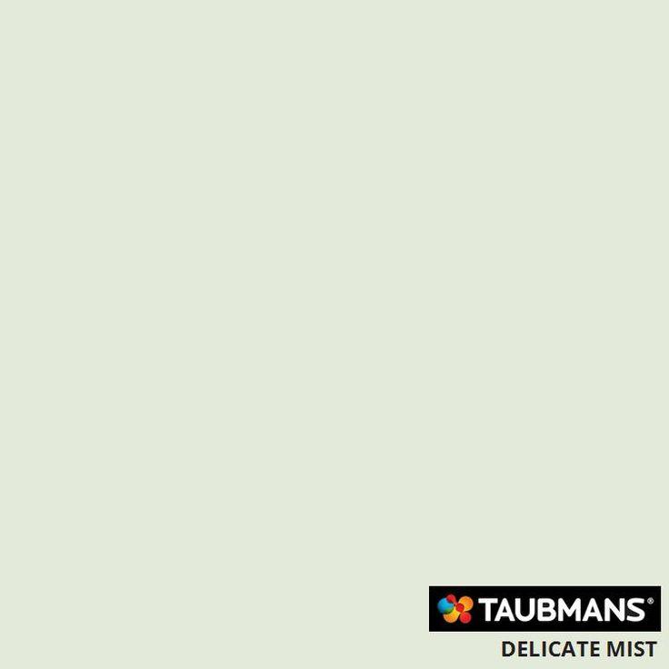 #Taubmanscolour #delicatemist