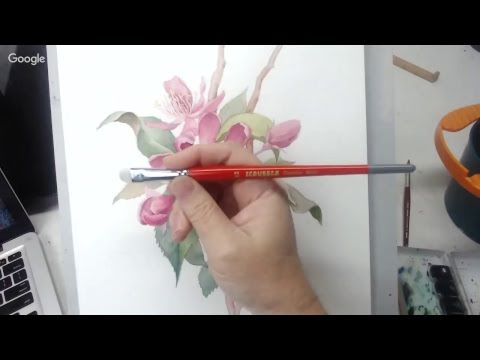 Painting a Floral Botanical – Recorded Live
