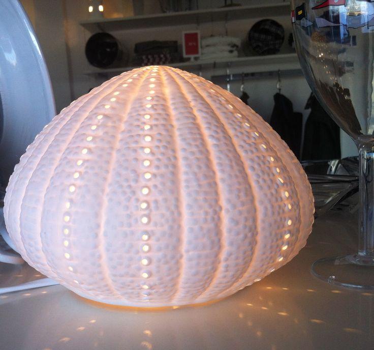 Las 25 mejores ideas sobre l mpara de concha en pinterest - Decoracion con conchas ...
