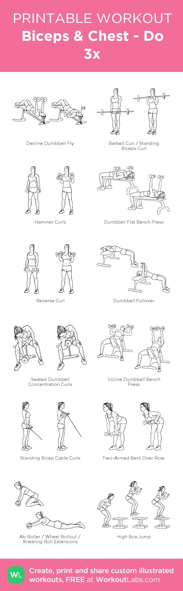 Biceps & Chest - Do 3x:my visual workout created at WorkoutLabs.com • Click through to customize and download as a FREE PDF! #customworkout