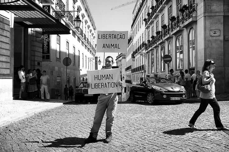 Lisbon Stories_23 by Pedro  Pinho, via 500px