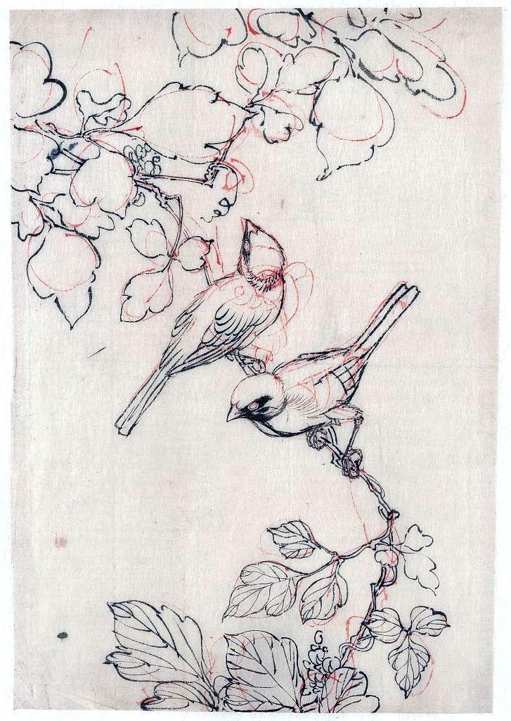 Birds on a branch, Japanese brush drawing  via vintageprintable.com