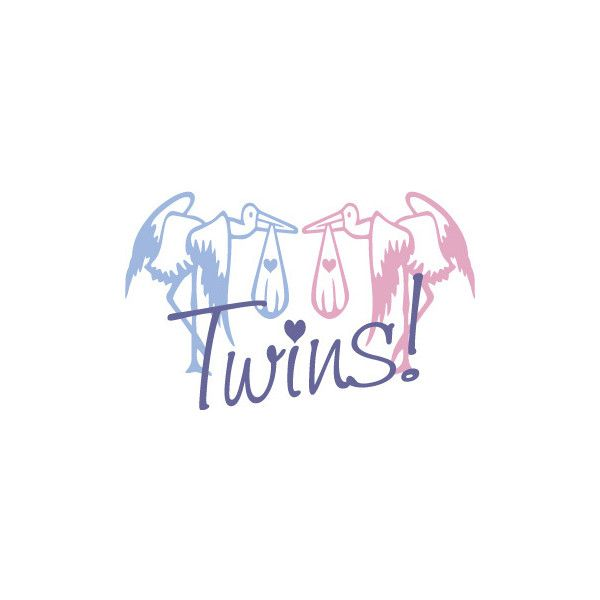 Twins, Boy And Girl Stork Graphic, Baby Clip Art In Pink