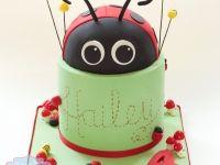 Ladybird themed birthday cake