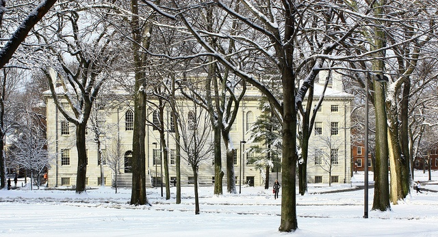 Winter scene: University Hall, Harvard Yard, #CambMA. DiscoverHarvard.com
