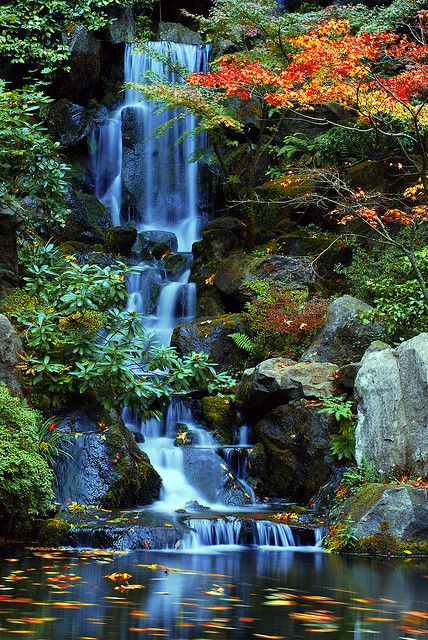 Heavenly falls in the fall at the japanese gardens for Garden fountains portland oregon