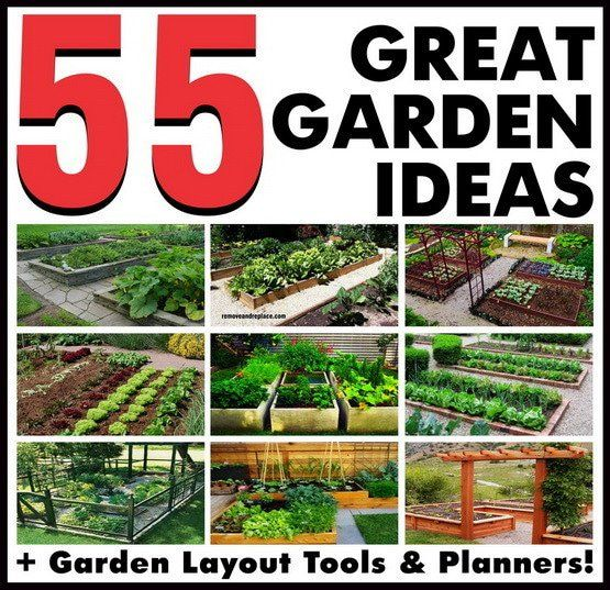 30 best projeto nosso quintal images on pinterest for Great garden ideas