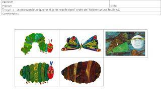 ID en vrac pour l'école: De la chenille au papillon...