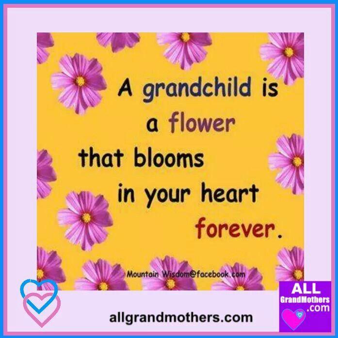 A Grandchild Is ...