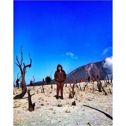 Gunung papandayan #paradise #mountain #papandayan