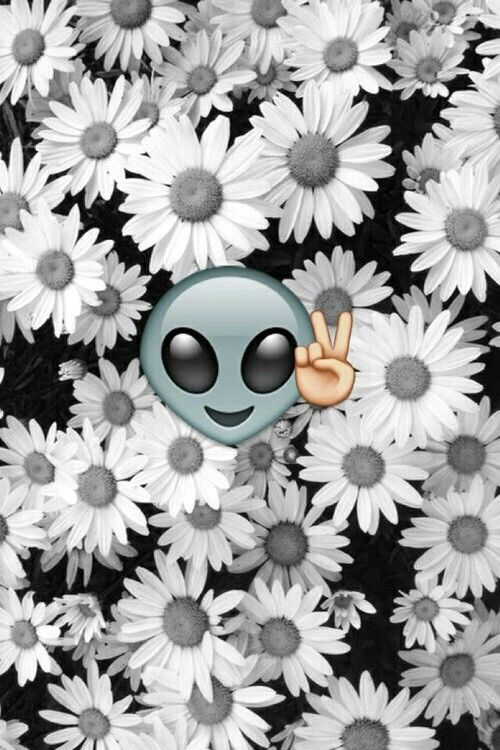 #blancoynegro #emoji