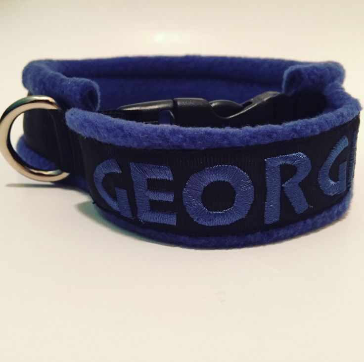 Custom flyball collar with embroidered handle. Made to order using your dog's neck measurement, with lots of felt and fleece padding for comfort for both team members!