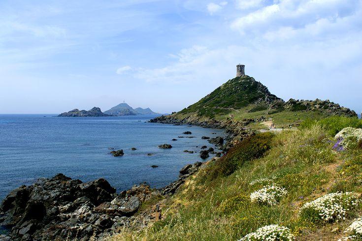 les îles sanguinaires - Corse