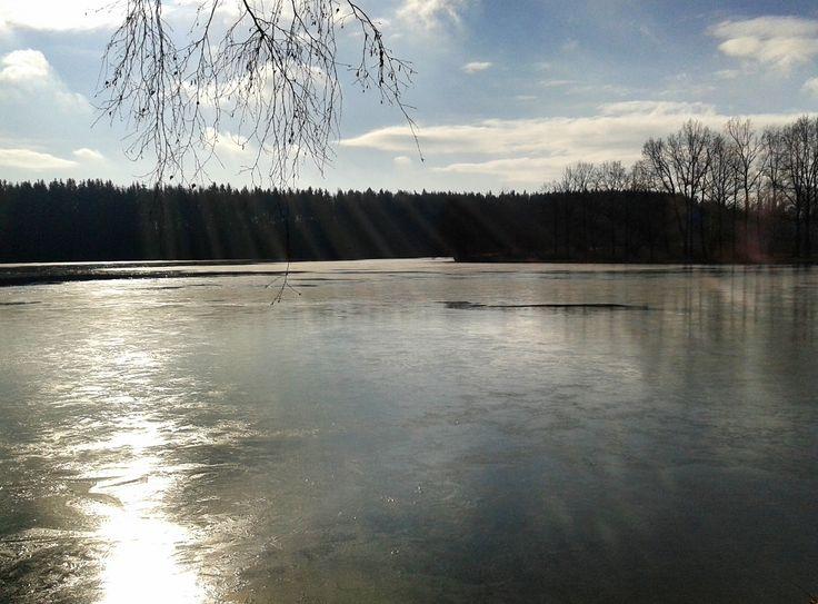 Kastelsky pond, Pilsen Region, Czech Republic.