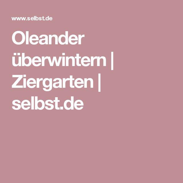 Oleander überwintern | Ziergarten | selbst.de