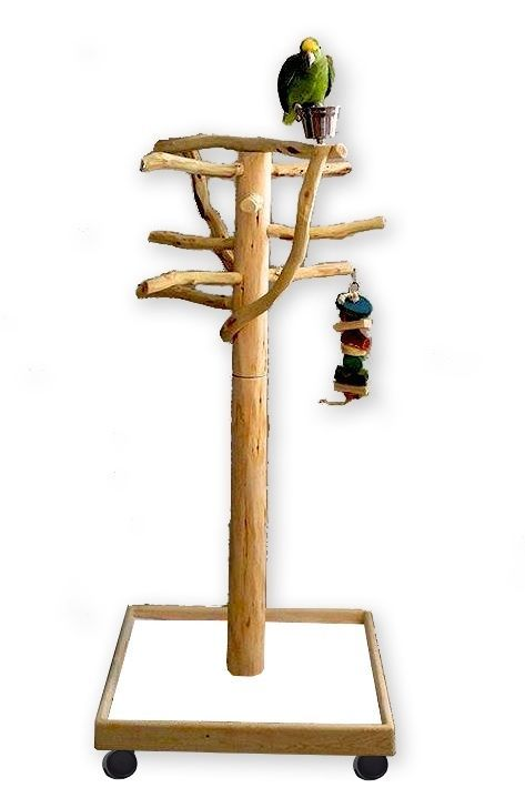 The APOLLO AFL2 is an incredible parrot stand suitable for most birds & parrots featuring 8 replaceable sandblasted manzanita perches. There are plenty of toy hooks too for hanging your FID's favorite toys. | eBay!