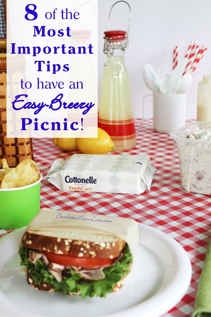 Southern Mom Loves: 8 of the Most Important Tips to Have an Easy-Breezy Picnic! #CleanRippleStyle [ad]