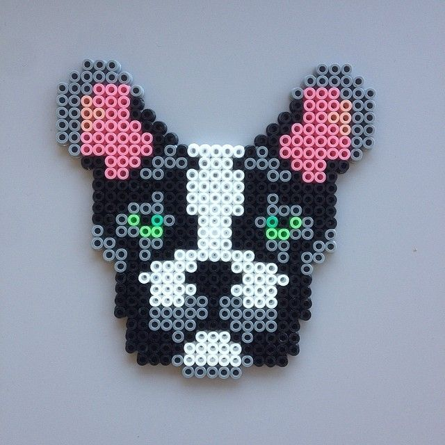 french bulldog hama - Buscar con Google