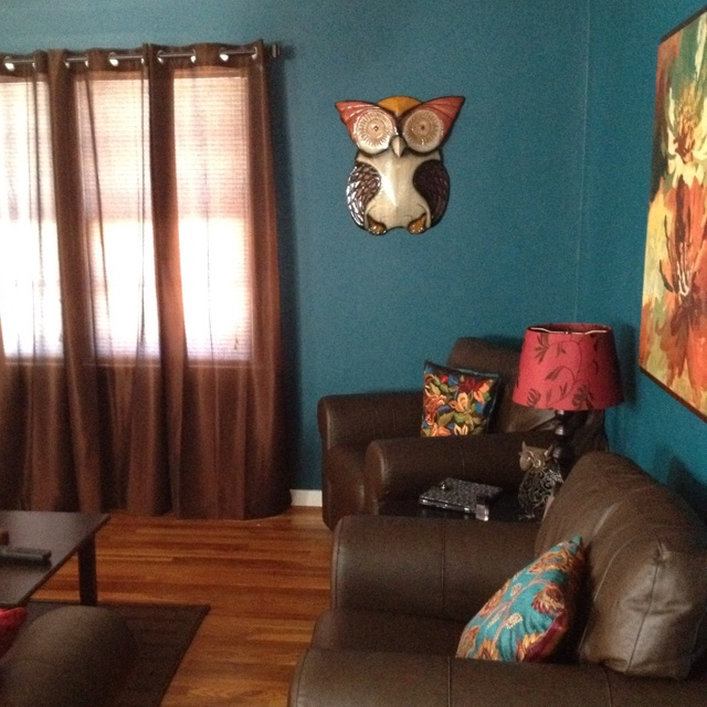 Bright teal living room with Pier 1 Wise Owl Wall Decor:  I love everything about this living room!  The wall color, the leather couches with the bright pillows, and the wood floors!