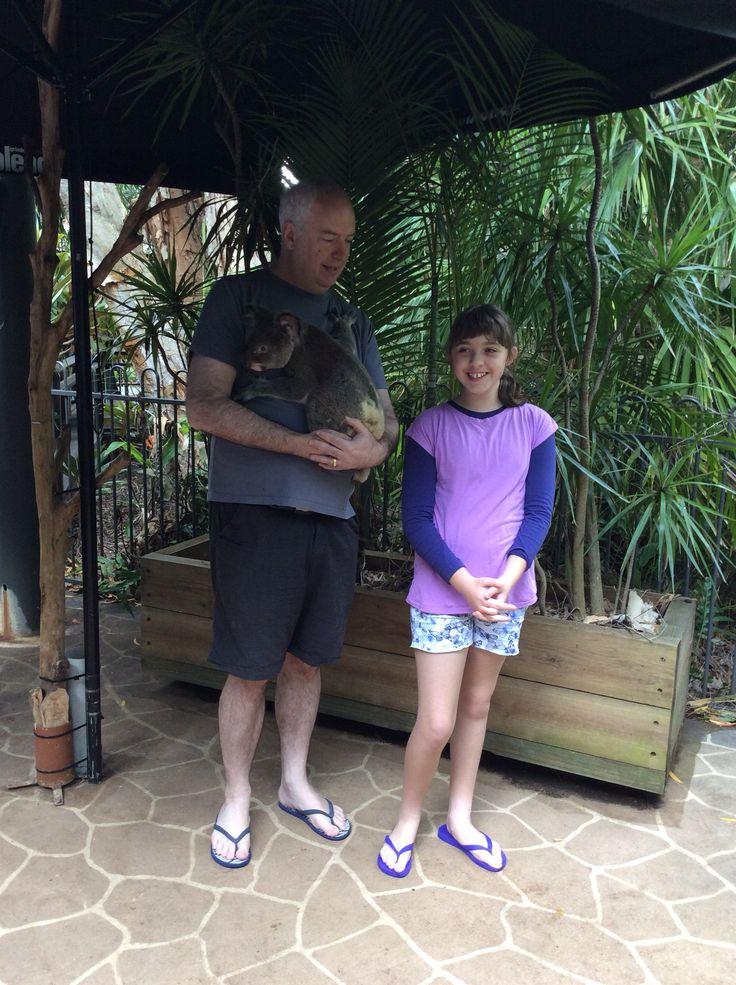 Willie the Koala - Hamilton Island