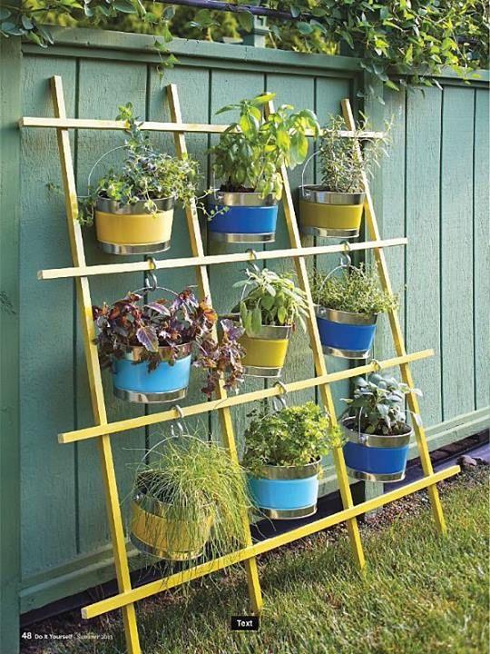 Vertical Gardening   Neat idea using Buckets and S hooks