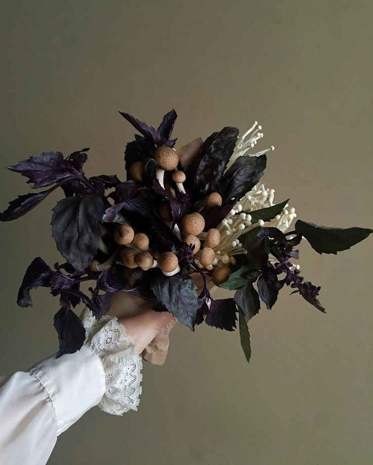 Purple basil and mushroom bouquet. All edible. #sickofmymushroombouquetsyet
