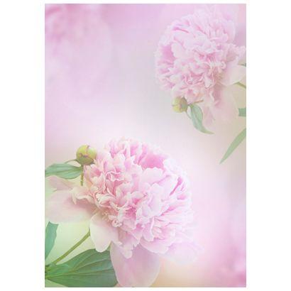 Pink #postcards