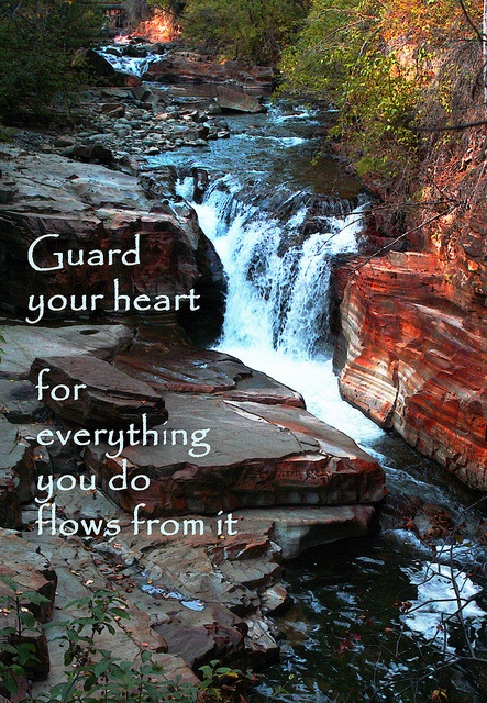 Guard your heart, for everything you do flows from it. Proverbs 4:23