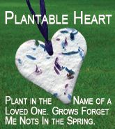 Plantable hearts with embedded forget-me-not flowers--great for the celebration of life/funeral service or thank you notes.