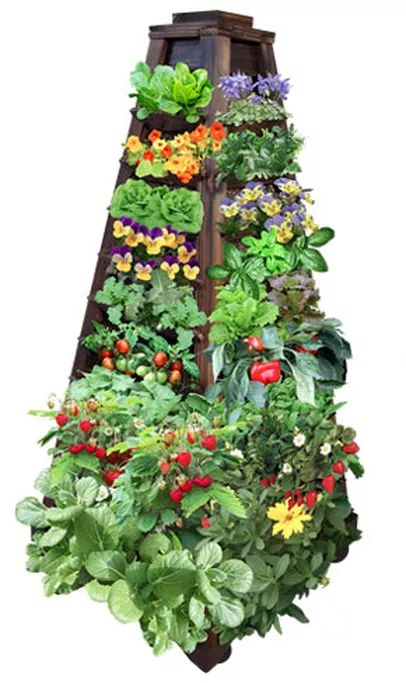 Go For It! You're buying one of the most beautiful vertical gardens on the market. When you get your EarthTower and start planting, you'll be glad you did!