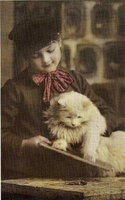 tinted photo of a boy with his white cat