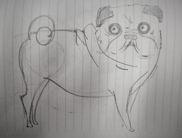 #draw #pug #pen #white #sketch