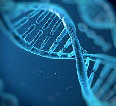 """Генетический редактор впервые """"принудил"""" раковые клетки к суициду"""