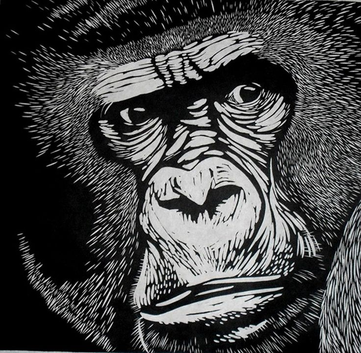 Gorilla linocut on japanese kozuke paper gsm white by