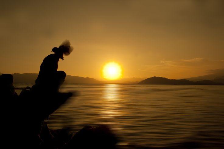 bird like a sun at pahawang island - Bandar Lampung