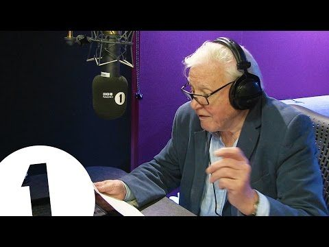 """Sir David Attenborough narrating Adele's """"Hello"""" video is the best thing since...Adele's """"Hello"""" video - Page 2 of 2"""