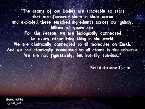 You Are Stardust Inspirational Neil Degrasse Tyson Quote Quotes