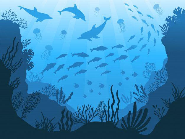 Fauna Submarina Del Oceano Plantas De A Premium Vector Freepik Vector Verano Luz Naturaleza Azul Ocean Illustration Sea Illustration Sea Plants