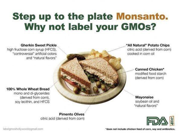 .: Eating Poison, Gmo S, Food Awareness, Food Gmos, Monsanto Gmo, Things, Eating Healthy, Real Food