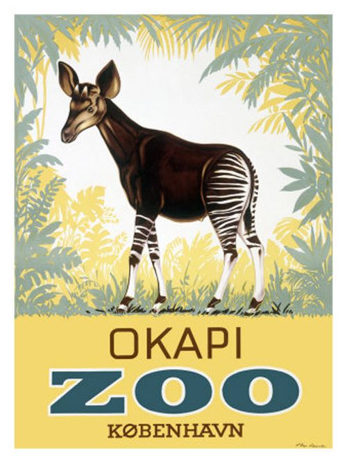 vintage zoo poster  The Okapi was my favorite animal as a little kid... and yes... I was an odd little lad.