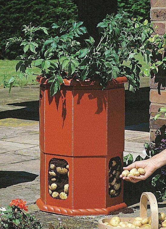 Details About Potato Barrel Planter Tub Grow Your Own Fruit / Veg Garden /  Outdoor / Patio New