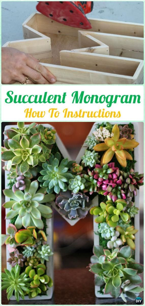 DIY Succulent Monogram Letter Instruction- DIY Indoor Succulent Garden Ideas Projects
