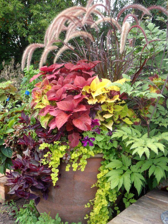 http://www.botanicalblitz.com/portfolio/summer/