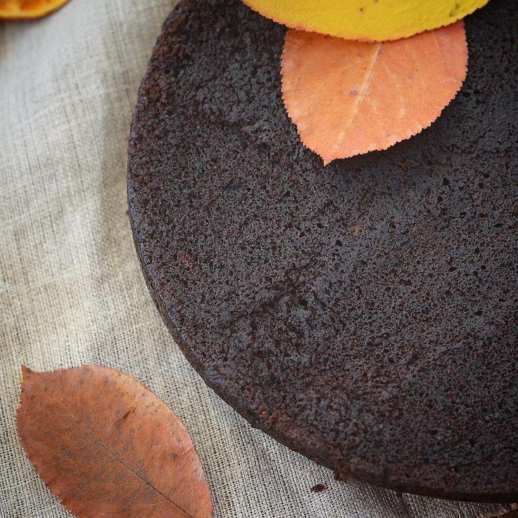 Шоколадный бисквит. Виктория Бредис