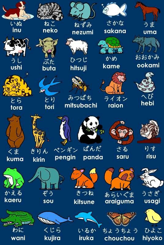 Japanese language – I maintain little charts like this in my pocket book from time to t…