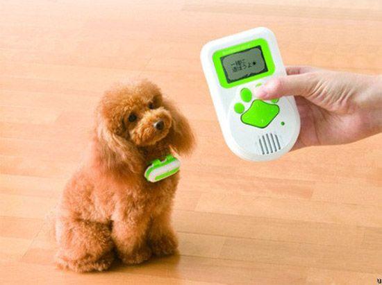 bowlingual dog collar/dog language translator