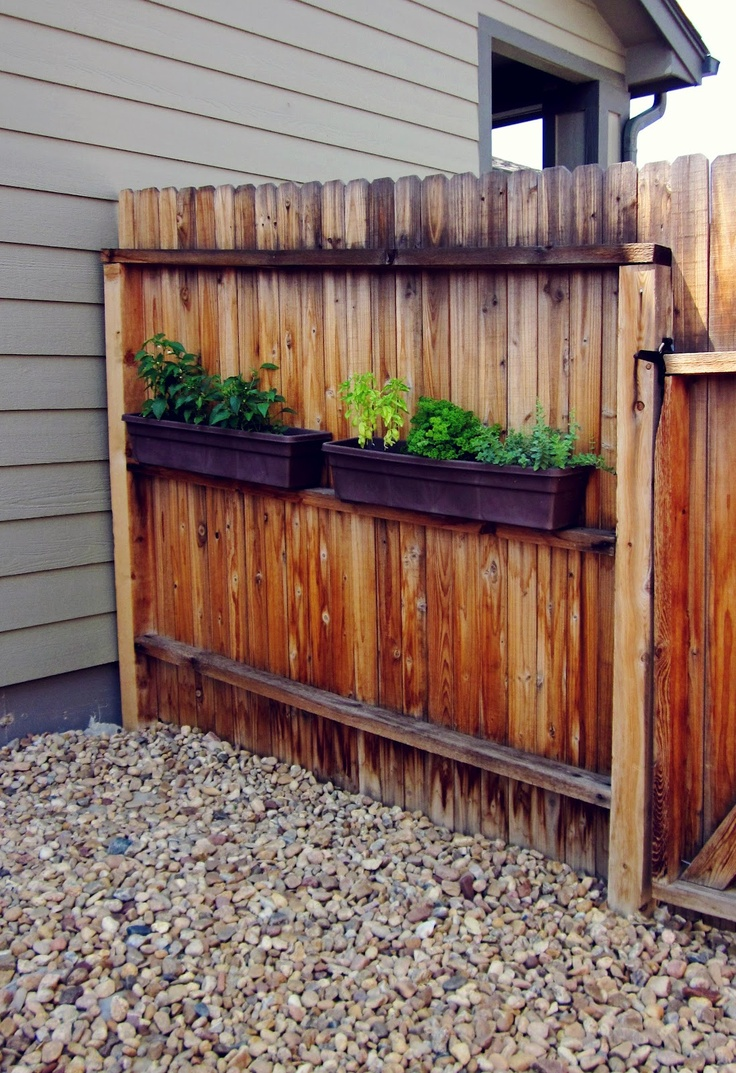 17 best images about how to hide an ugly fence on pinterest planters plants and fencing. Black Bedroom Furniture Sets. Home Design Ideas