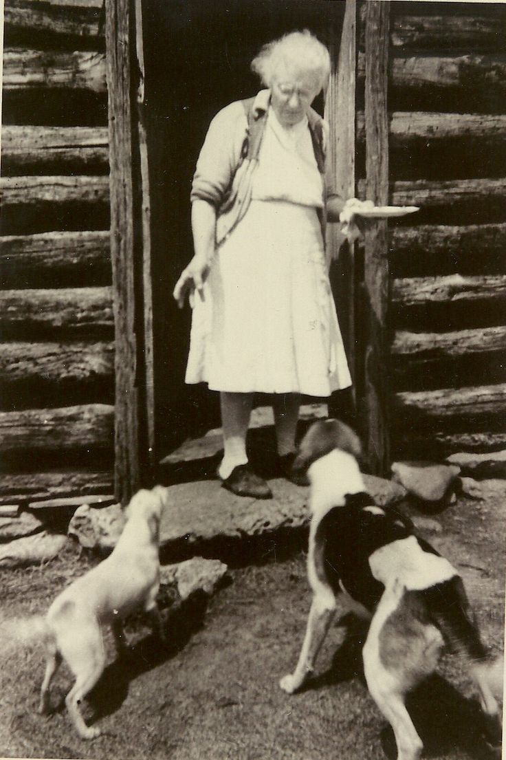 Tennessee rutherford county christiana - 1952 Christiana Tn Mattie Ola Orren Gibson Mammy Feeding The Dogs At